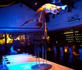 Burlesque Style Cabaret, Fire Eaters and Dancing at Circus